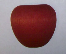 Apple, Split Large Dyed